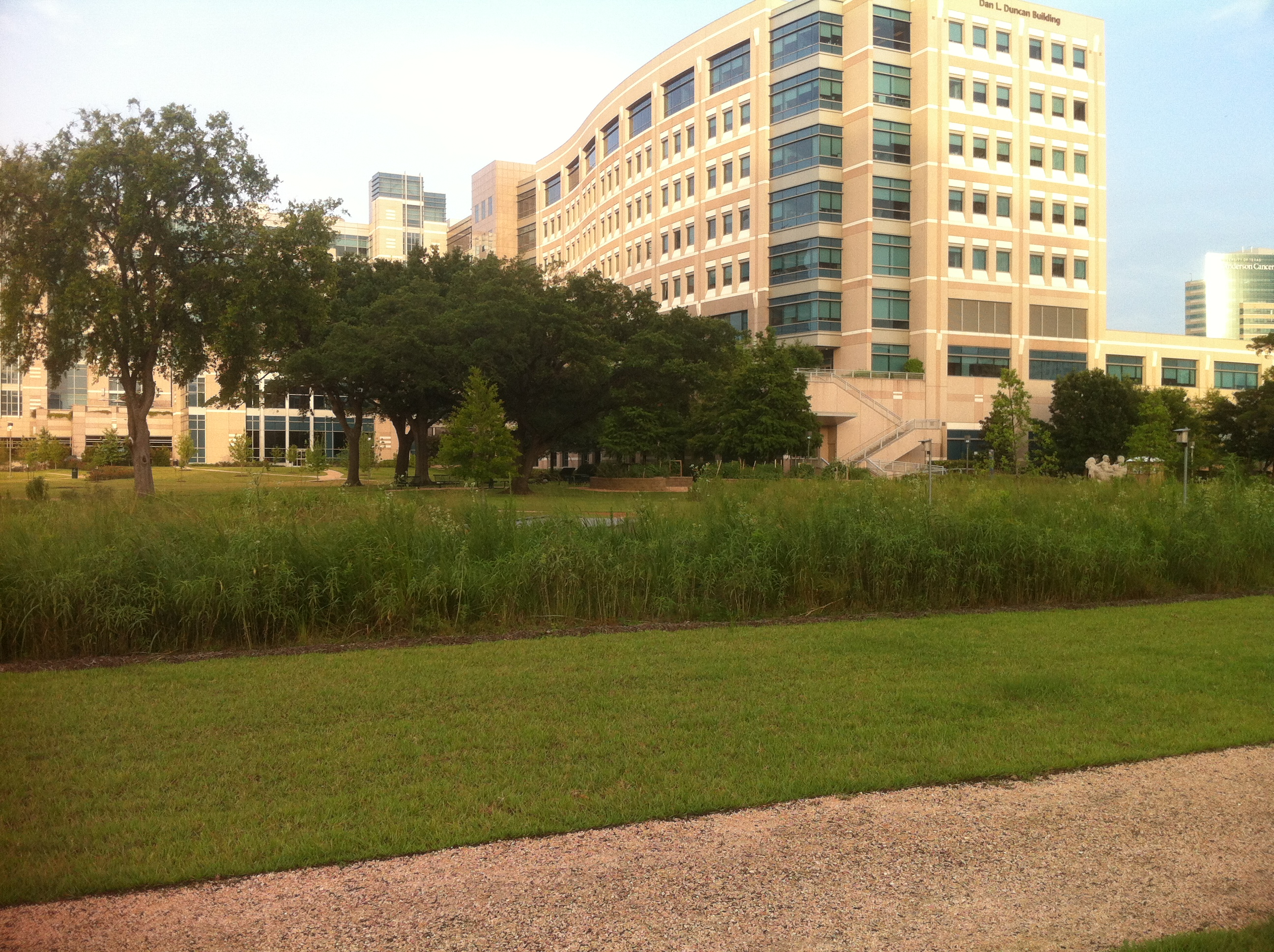 the MD Anderson-Mays Center and Steve n\' Jake pocket prairies ...