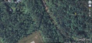 blue swamp 2 28 06