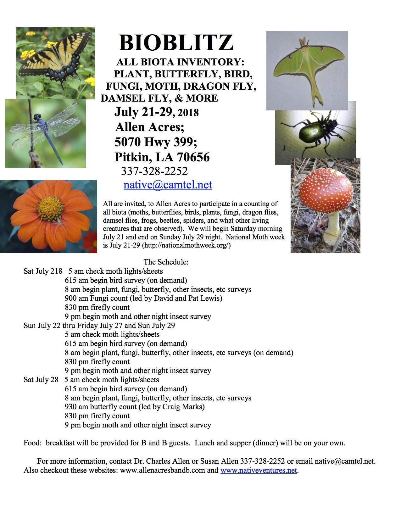 scientist builds garden for bugs meadows seed art rh marcpastorek com